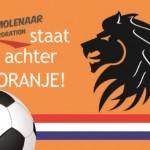 Deurmat_WK_2014_voetbal_oranje_mat_leeuw_vlag_logo_tekst_Molenaar_Decoration_staat_achter_oranje