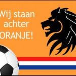 Deurmat_WK_2014_voetbal_oranje_mat_leeuw_vlag_logo_tekst_Wij_staan_achter_oranje