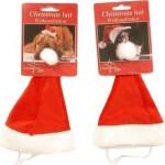 Kerstmuts_voor_hond_kat_huisdier_met_elastiek_ong._18,5x13_cm_diameter_onderzijde_ong_7_cm_2,49